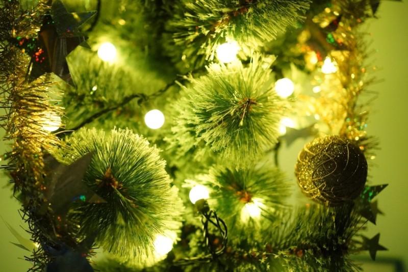 Светодиодные гирлянды для Нового года в магазине sadovnik.ru